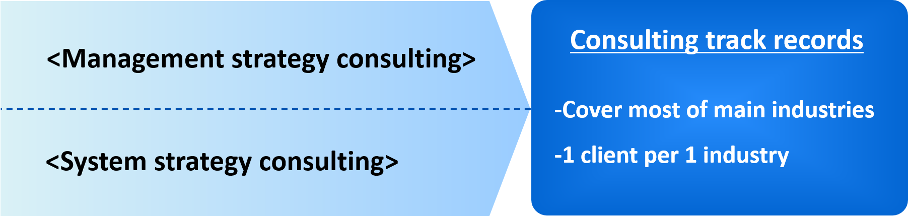 Tokyo Consulting Inc's solutions