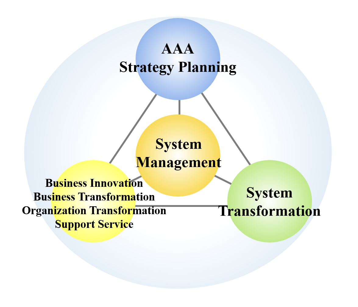 strategic plan for the system
